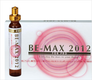 BE-MAX 2012